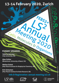 LS2 Annual Meeting 2020